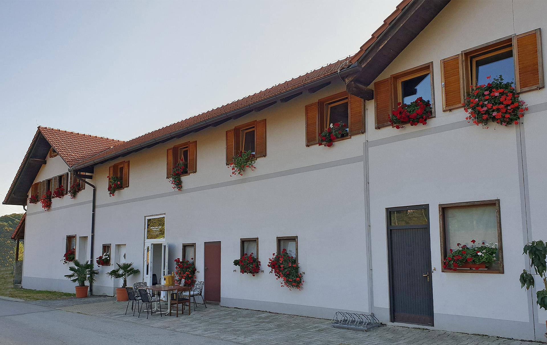 Dom za odrasle osobe Veselko